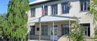 Неклиновский районный суд Ростовской области 1